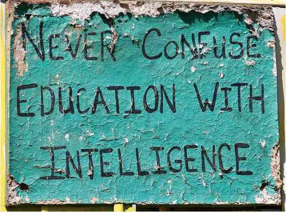 education-intelligence.jpg